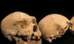 Un-Dna-di-400-mila-anni-manda-in-tilt-gli-antropologi_h_partb