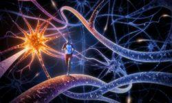 fare-sport-fa-stare-bene-il-nostro-cervello
