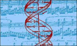 svelata la sinfonia della vita