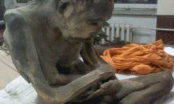 monaco buddista ancora  vivo dopo 200 anni