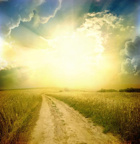 Sentiero verso il sole