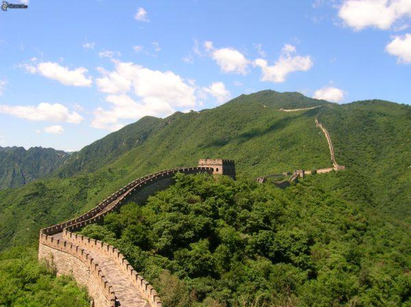 La Grande Muraglia Cinese - Foresta