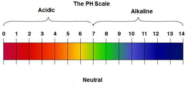 Scala PH