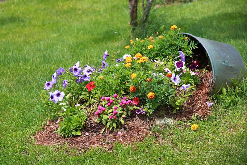 Secchio pieno di fiori