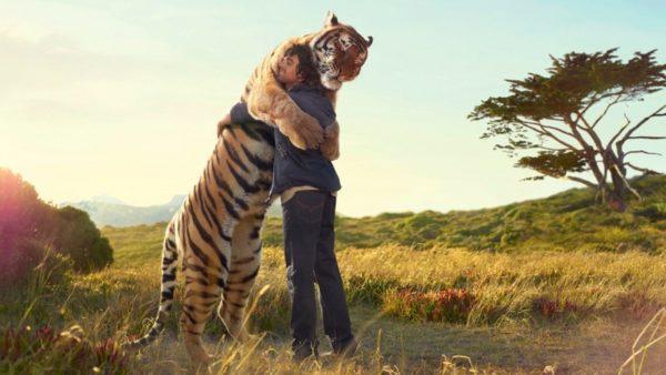Abbraccio tra uomo e tigre