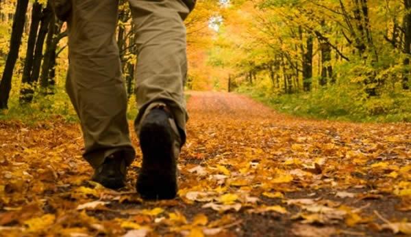 Passeggiare nella natura