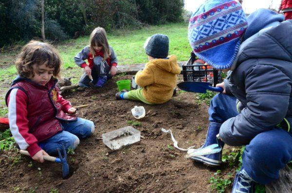 I bambini dell'Asilo nel bosco di Lanuvio giocano nella terra e scoprono il microcosmo al di sotto di essa