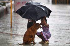 due bambini altruisti con un cane di strada durante i monsoni in India