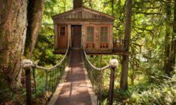 Casa sugli alberi nel bosco