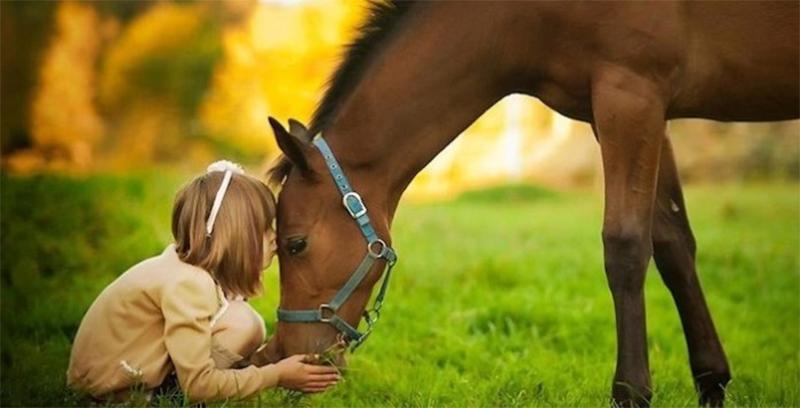 cavallo con bambina