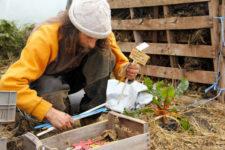 Pascal Poot - Pomodori senza acqua né pesticidi