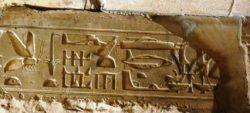 Geroglifico nel Tempio Egizio di Abydos
