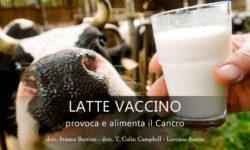 il latte provoca e alimaenta il cancro