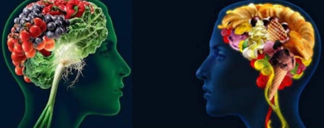 Relazione tra cibo e comportamento