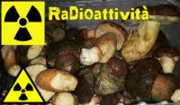 funghi radioattivi del Piemonte