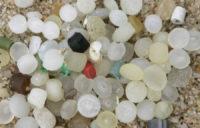 Microsfere di plastica