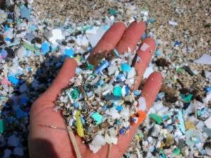 Microplastiche nei mari