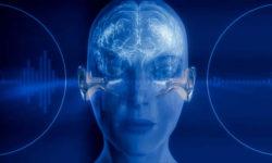 Onde sonore e cervello