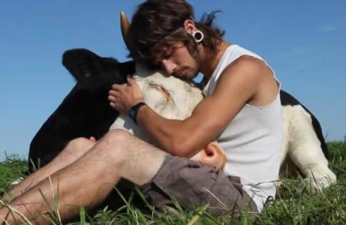 Amare gli animali