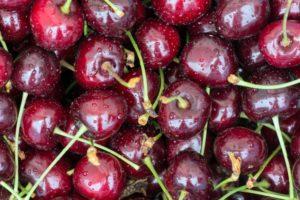 Acido cianidrico nelle ciliegie