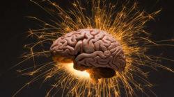 Il cervello e gli schemi mentali