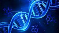 Mutazioni DNA