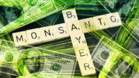 Colosso Monsanto Bayer