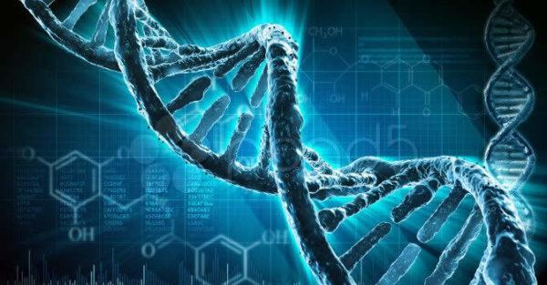 """<b>Uno studio congiunto tra Ospedale Niguarda e Università Statale di Milano svela sequenza misteriosa del Dna e apre a nuove prospettive di cura per i malati di leucemia.</b>   C'è del Dna """"alieno"""" nelle cellule cancerose di oltre la metà dei malati di leucemia mieloide acuta, una famiglia di tumori del sangue, che solo in Italia fa registrare ogni anno 2 mila nuovi casi.La scoperta, di quelle probabilmente destinate a cambiare la storia della medicina oncoematologica, è tutta italiana - milanese per la precisione - e appare oggi su 'Scientific Reports', rivista del gruppo Nature.  Uno"""