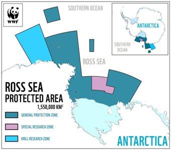 il mega santuario marino in antartide nel mare del ross