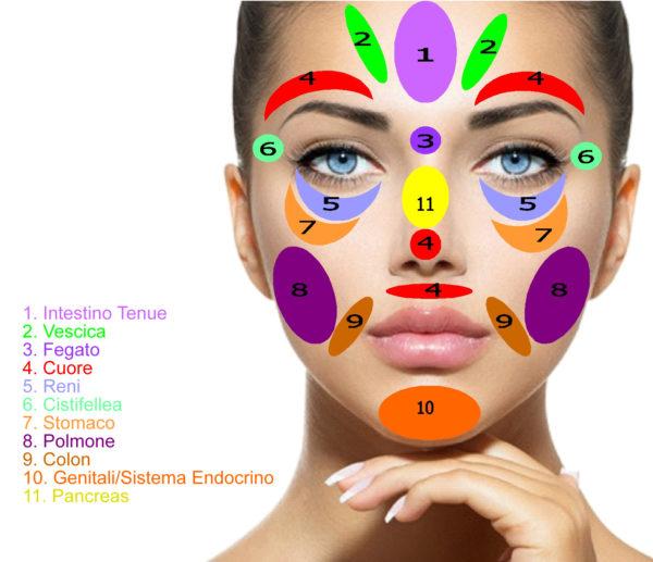 Mappa riflessologia facciale