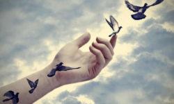 Perdonare e lasciare andare