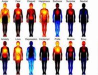 Ogni emozione influisce sull'organismo determinandone lo stato di salute