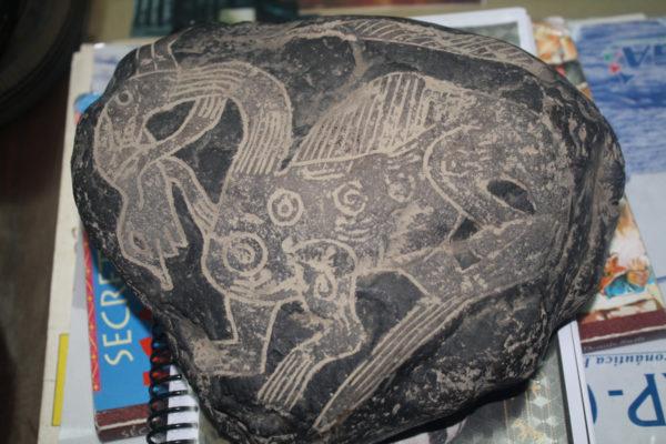 Dinosauro raffigurato su una pietra di Ica (3)
