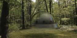 Ufo nella foresta