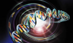 Il DNA sente tutto