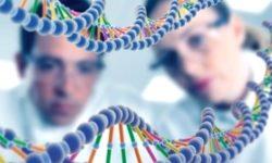 Vaccini e linee cellulari fetali. Attacco alla genetica umana?