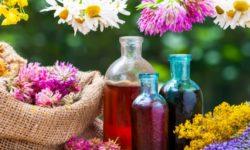 9 disturbi frequenti da curare con le erbe