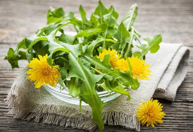 Insalata di Tarassaco, foglie e fiori
