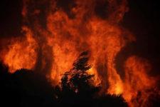 Incendi nell'Antropocene