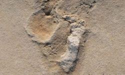 L'impronta di Creta