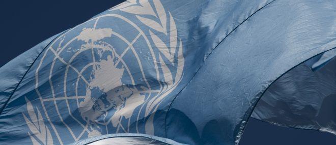 COVID-19 aggiornamenti sul lavoro delle Nazioni Unite ONU: il ...