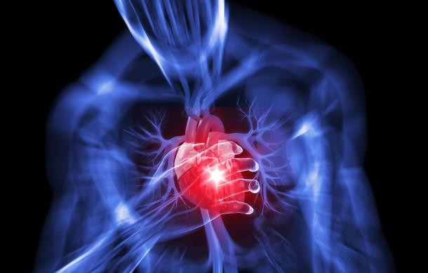 Attività fisica come terapia nell'ipertensione e nelle malattie ...