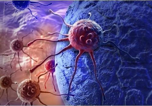Glucosio e Cellule Tumorali   Approfondimenti   Micoterapia