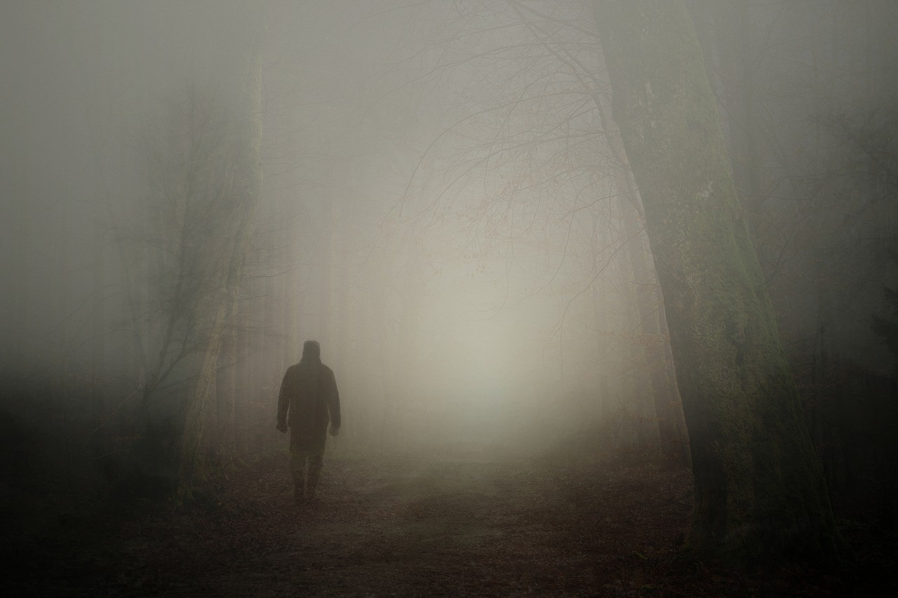 Fog Man Person - Free photo on Pixabay