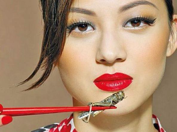 Mangiare insetti, la nuova cucina comincia online - CorrieredelVeneto.it